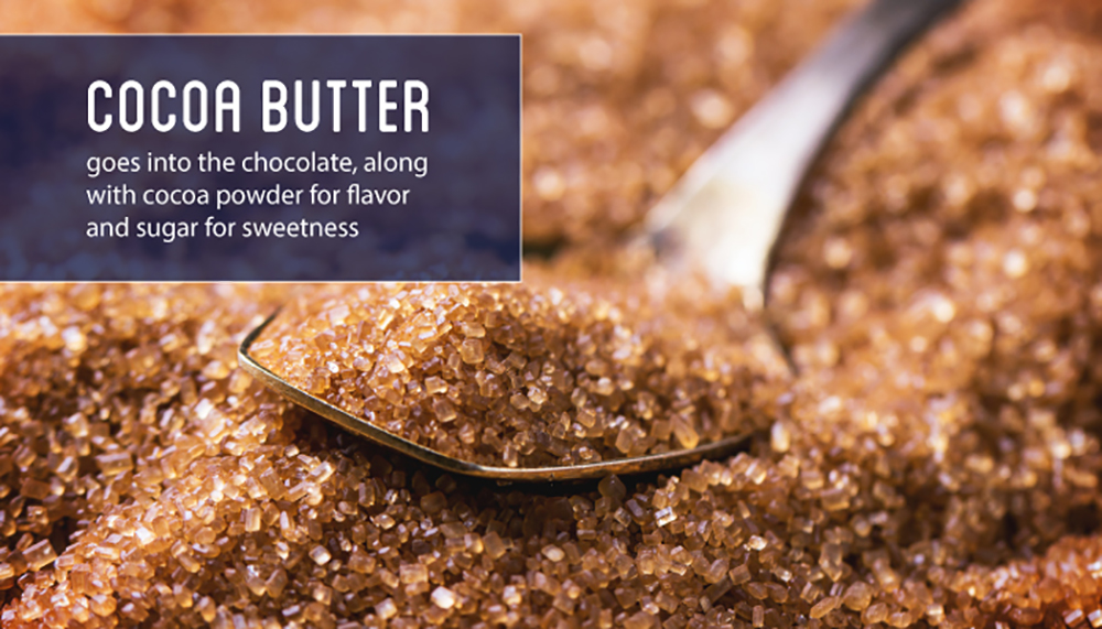 cocoa-butter-gets-added-to-chocolate-for-flavor